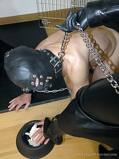 Collars and femdom punishment